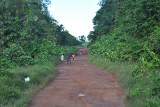 Road through jungle - Barima-Waini Region - Guyana