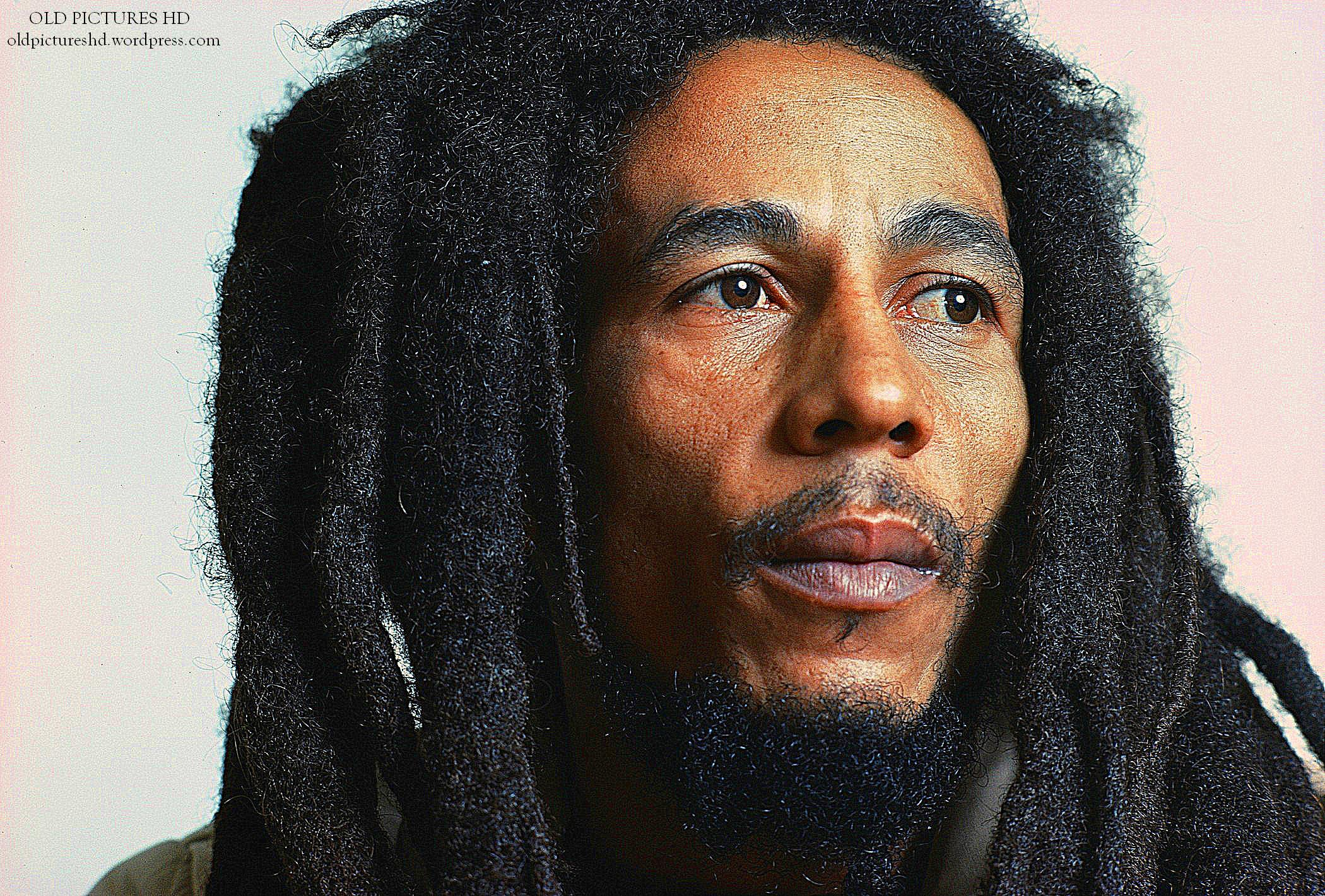 Bob Marley: Paddypicasso