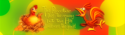 Rooster and Hen C